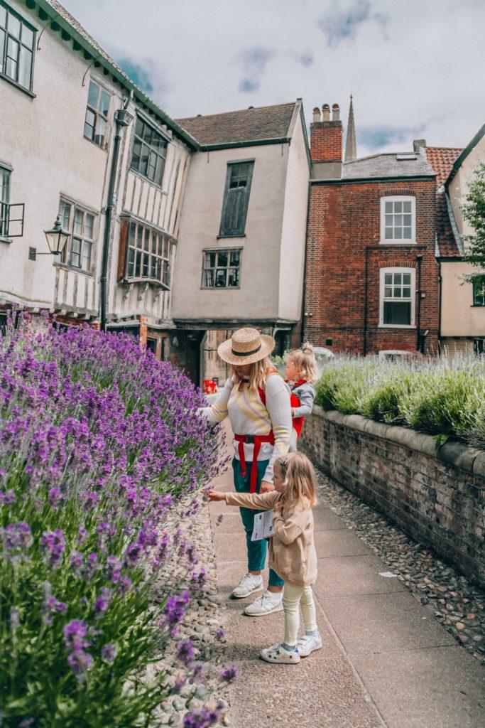 Norwich with kids