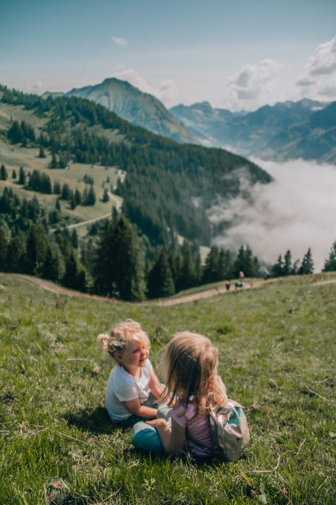 bregenzerwald with toddlers