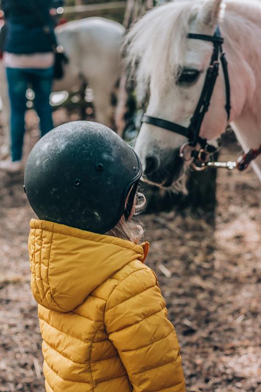 Center Parcs Pony Rides