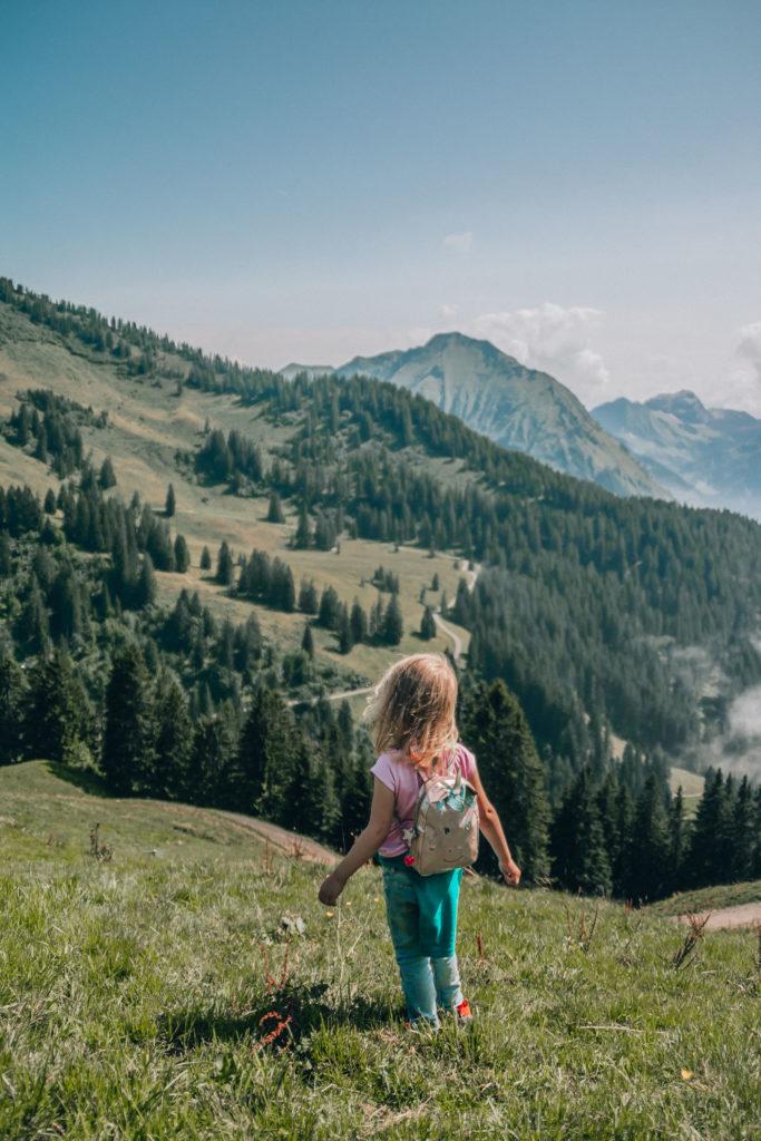 Bregenzerwald summer